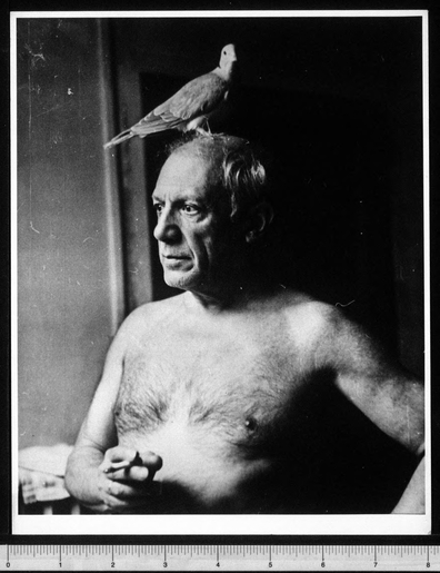 Portrait of Pablo Picasso by John D. Schiff